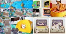 6 Adet Evcil Hayvan Yatağı Yapımı Fikri