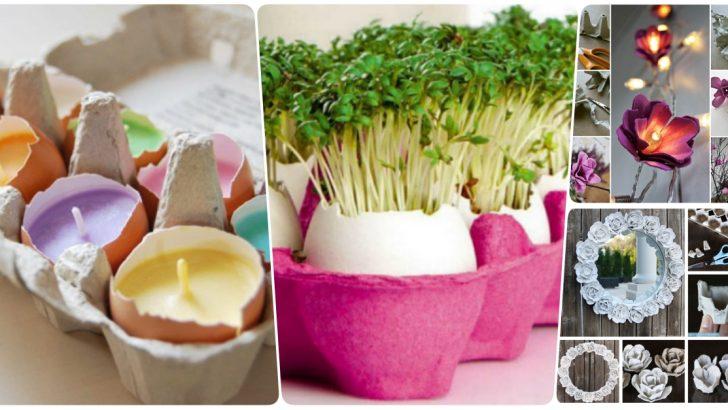 Yumurta Kartonlarını Değerlendirme Fikirleri