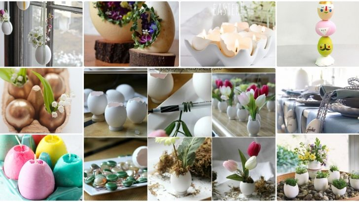 12 Adet Yumurta Kabuklarını Değerlendirme Fikirleri