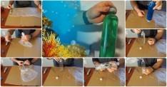 Pet Şişeden Basit Bir Akvaryum Yapımı