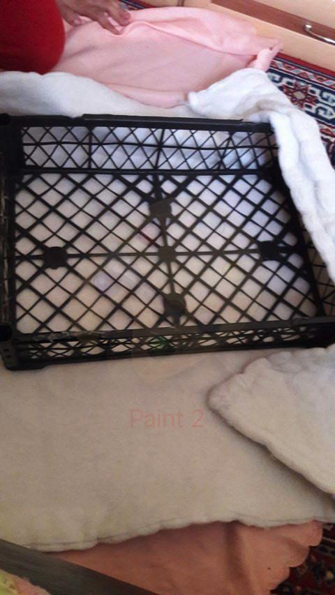 Plastik kasa ile bebek yatağı yapımı 1