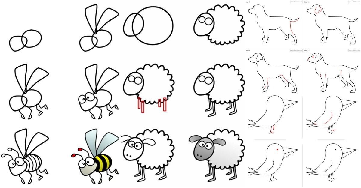 24 Adet Hayvan Çizimleri