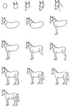 24 Adet Adım Adım Kolay Hayvan çizimleri Hobiler