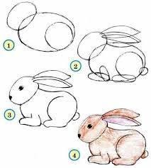 Basit Tavşan Çizimi