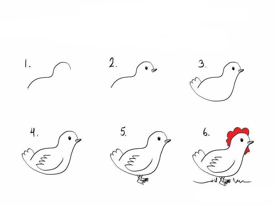 Tavuk Resmi Çizimi