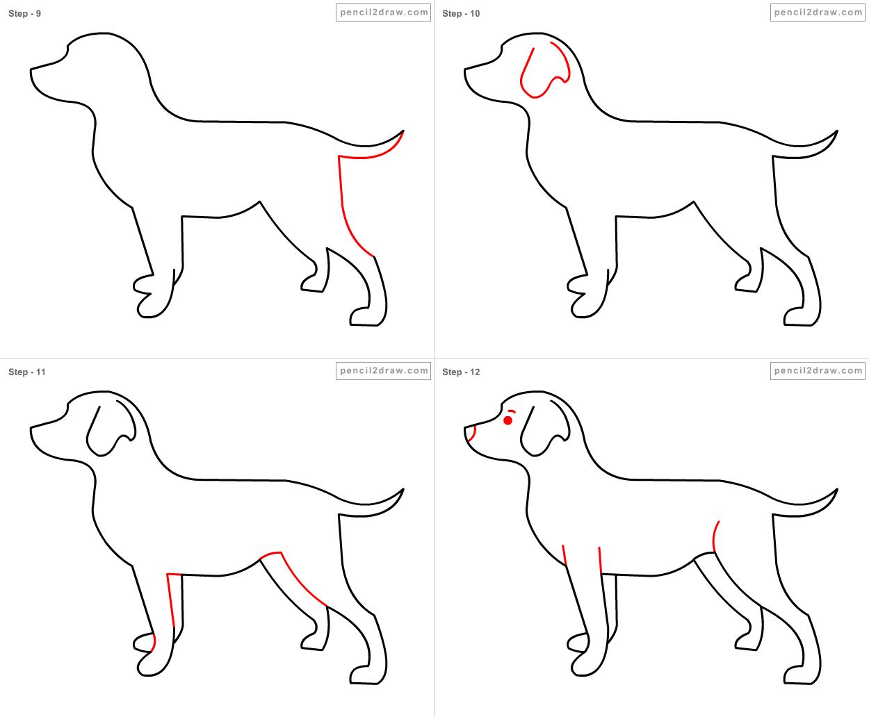 Yavru Köpek Çizimi