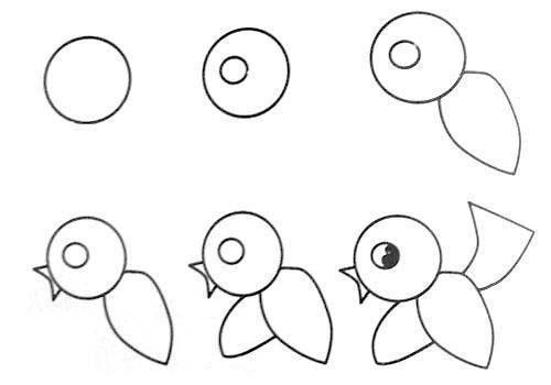 Yavru Kuş Çizimi