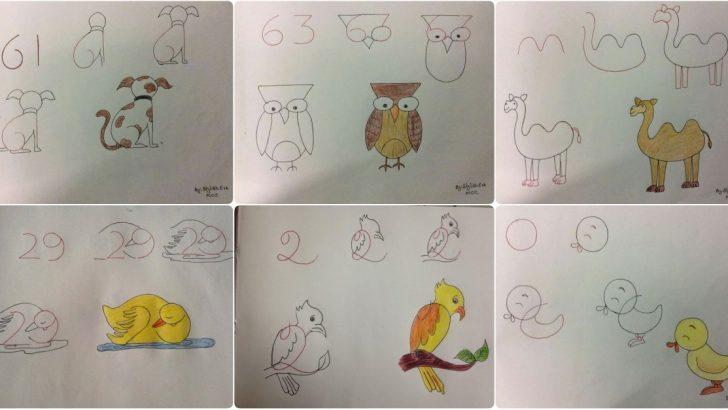 Sayılarla Hayvan Resmi Çizimleri