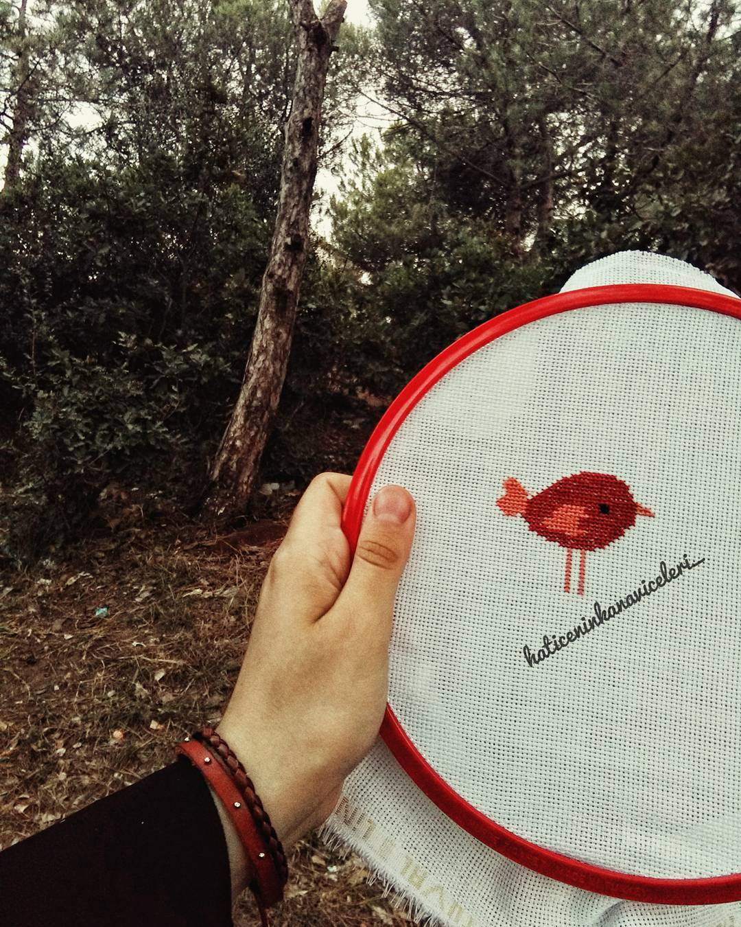 Kuş Desenli Etamin